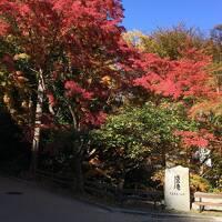 金閣寺からきぬかけの道へ アマン京都/日本料理 鷹庵でお昼ごはん
