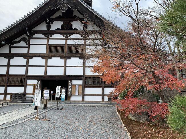 冬の京都 その1の続きです。<br /><br />楊谷寺から嵐山に移動しました。<br />人気の「パンとエスプレッソと嵐山庭園」で早めのランチ、天龍寺や竹林の小径、二尊院など。<br />