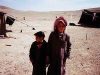 話しかけた人は大使夫人! ダマスカスでの大使宅宿泊と世界遺産パルミラ=1990年中東・中欧の旅2