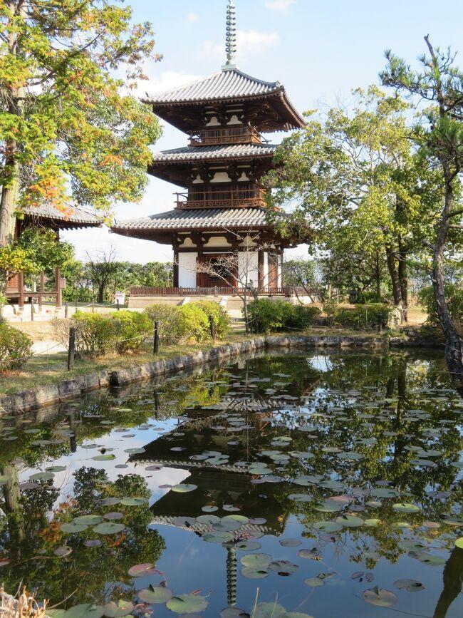 2020年12月5日(土)自分の誕生日に奈良旅行が出来る事に感謝しつつ、こちらの旅行記は法隆寺→法輪寺→法起寺へ移動し、法起寺の素敵な風景を楽しんだ内容をアップさせて頂いております。<br /><br />法起寺の塔は、706年に完成し、現存する最古で最大の三重塔のようです。<br />聖徳太子別宮の跡と伝えられているらしく、池後寺、岡本寺などともいわれているようで由緒あるお寺のようです。<br />個人的な意見ですが、法起寺は敷地面積はと小さいですが、庭園から見える風景がとても素敵で一番好きです。<br />