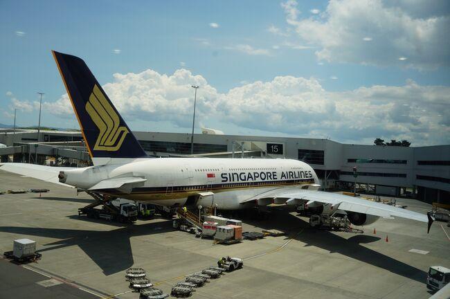スターアライアンスのビジネスクラス世界一周航空券を軸に、1回を一ヶ月をめどにした5回の旅で搭乗した飛行機についてまとめてみました。<br /> 旅では、自分なりに飛行機や空港の写真を撮っていますが、搭乗時間が夜間の場合や空港のセキュリーなどによって撮影できなかったところもあります。<br /> また、すでに旅行記に投稿した写真が多いこと、少しコメントが長いのでpart 1とpart 2に分けたこと、ご理解ください。飛行機好きのオッサンが一人で、世界一周の旅で、どれくらい飛行機に乗ってきたかをご紹介したいと思います。<br />