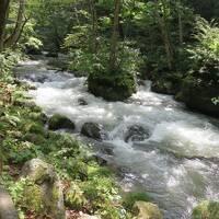 2014星野リゾート青森屋へ(3)星野リゾート奥入瀬渓流ホテルから奥入瀬渓流めぐり