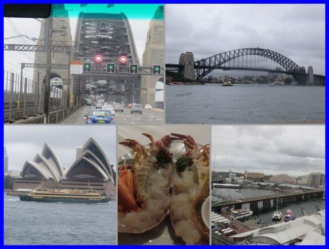 中断していた【★旅のアーカイブから★2015年のオーストラリア・シドニー旅行記】を再開します。<br /><br />この旅では<br />往復JALファーストクラス。<br />もちろん。国際線のファーストクラスなんて自腹じゃ利用できないのでマイル特典航空券です。<br />シドニーではJALパックのランドオンリー(航空券を含まない現地ツアー)を利用しました。<br />シドニー現地での行動は、<br />1)JALパックのコースに含まれる水族館や市内観光(空港送迎とホテルも含む)<br />2)日本から予約してきたJALパックの現地オプショナルツアー<br />3)VELTRAやトラベルドンキーで予約しておいた観光やレストラン<br />4)現地で紹介のあったオプショナルツアーやレストラン<br />5)残りは行き当たりばったりの自由行動<br />を組み合わせてわれながらアグレッシブルな日々になりました。<br /><br /><br />本編では<br />シドニー到着初日。<br />ハーバーブリッジやオペラハウスなど、シドニーの定番観光地をまわります。<br />ダーリングハーバーの見えるホテルにチェックインして、夕食はロブスターのお刺身です。<br /><br />**********<br />旅行時期2015年2月~3月<br />投稿日2020年12月20日