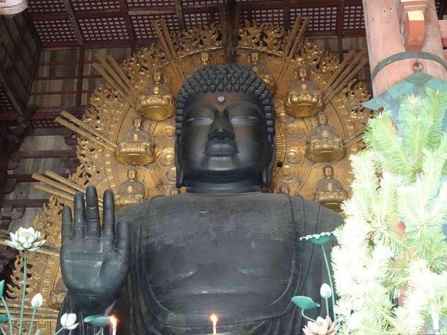 GoTo奈良3泊4日旅行3日目②(東大寺~奈良うまいものプラザ夕食まで)