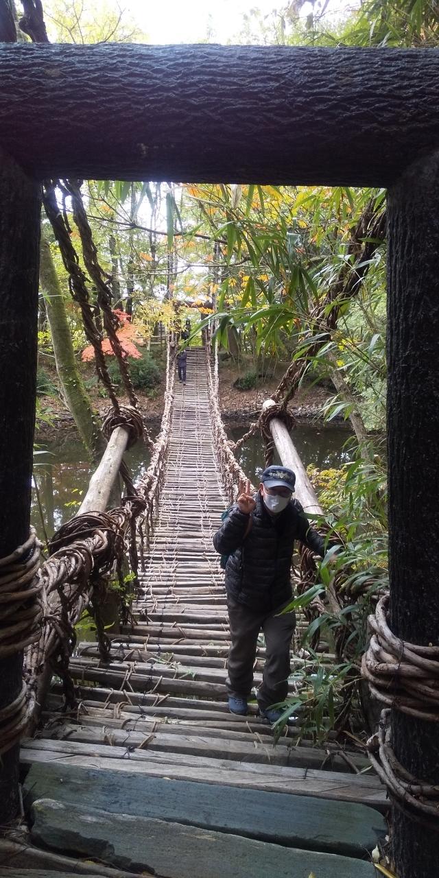 写真は四国村のかずら橋を渡り切ってホッとしている私の<br />写真です。<br />家内に言われてピースサインのポーズも取ってしまいました。<br />(しかし左手はしっかりと橋の葛を握りしめています)<br /><br />今回の旅の1回目のブログでも書きましたが四国村のかずら橋は<br />私にとっては鬼門(※)でした。<br />※鬼門:ここでは「苦手とする相手・事柄」という意味で<br />    使っています。<br />私のような強度の高所恐怖症の人(想像力に富んだ優秀な人間)は<br />このかずら橋は避けた方が良いかもしれません。<br />でも私にはドキドキして旅の最後の良い思い出になりました。<br />旅は想定外の事があった方が楽しい記憶が残ると思います。<br />みなさんも是非チャレンジしてください。<br /><br />それでは以下で屋島と四国村を訪ねた顛末を報告いたします。<br /><br /><旅のスケジュール><br /><br />晩秋の四国旅行8日間(2020年11月7日~14日)<br /><br /><HIS予約><br />旅行日数8日間 大人 2名<br />成田空港第二ビル6:30 T3へ移動<br />往路2020年11月07日(土)<br />ジェットスター・ジャパン GK401便 <br />東京 (成田)07:30⇒到着: 松山09:20 普通席<br />松山空港リムジンバス8.5km、券売機で購入か<br />空港9:35発大街道10:04着又は10:25発⇒10:54着<br /><br />①11月07日(土)<br />ANAクラウンプラザホテル松山 一番町3-2-1, 松山, 愛媛県,<br />790-0001  08-9947-8333<br />11月07日(土)、アウト: 11月08日(日)<br />スタンダードツイン (禁煙)、 食事なし<br /><br />11月7日(土)は9:20到着後リムジンバスで大街道下車、<br />ANAホテルに荷物を預け松山城見学などを予定。<br />ANAホテル宿泊、地域クーポン電子をスマホで発券する。<br />Jrみどりの窓口に行きバースデイ切符3日券購入,2人分を買うこと。<br />一人が誕生月なので同行者も購入できる。<br />グリーン車一人13240円。<br /><br />②11月08日(日)<br />ダイワロイネットホテル松山<br />一番町2-6-5, 松山, 愛媛県, 790-0001<br />08-9913-1355<br />11月08日(日)、アウト: 11月09日(月)<br />ツイン A(禁煙)、 食事なし<br />地域共通クーポンは(電子)スマホで得られた。<br /> https://goto-travel-ecoupon.jp <br /><br />11月8日(日)<br />JR松山8:20発(一人分乗車料金970円)⇒9:39今治着<br />半島展望台は 今治駅から9:58バスで22分<br />小浦経由大浜行きバスにて「展望台入口」下車10:20。<br />展望台入口から徒歩で10分糸山公園・来島海峡展望館<br />(別の展望台もあり)<br />13:42展望台入り口乗車(次の小浦・大浜行き迄3時間もあり)<br />昼食は近くにホテルがありそこでランチ<br /><br />又は今治城の見学後駅から13:20発(見学時間なし)<br />13:42展望台着と同時に降りずに発車(日曜はこれが最終)<br />13:42展望台入り口乗車小浦・大浜行き<br />14:06今治駅着そのまま降りずに<br />せとうちバス今治城前14:15下車もあり<br />城の見学料金500円(6階から来島海峡大橋が見える)を<br />3時間見学した後に今治駅17:35始発バス⇒18:42着大街道<br /><br />又は9:39今治駅着から城見学。13:20駅発のバス。<br />展望台で降りずにバスから景色を撮って<br />13:42展望台入り口乗車⇒小浦・大浜行き 14:06今治駅着<br />今治 駅14:39発せとうち特急バス(一人料金970円)<br />15:30大街道着もあり<br /><br />③11月09日(月)<br />天然温泉 紺碧の湯 ドーミーイン高知<br />帯屋町1-9-12, 高知, 高知県, 780-0841<br />08-8872-5489<br />11月09日(月)、アウト: 11月10日(火)<br />スタンダードツイン、カツオのたたきなどブッフェ朝食付き<br /><br />11月9日(月)<br