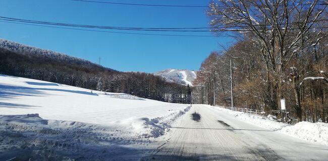 20−21年菅平高原初滑り。パインビーク大松山。