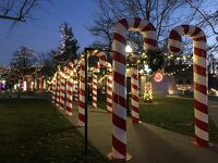 コロナでもアメリカのクリスマスライツは素敵でした!ビデオめがねで撮影。
