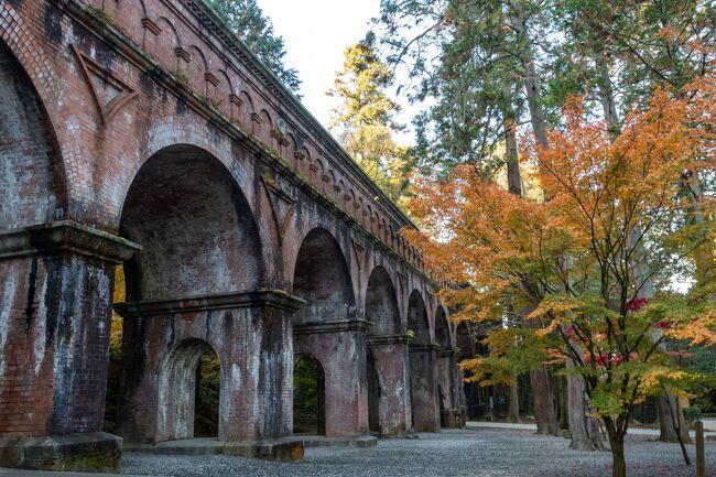【京都の紅葉】京都の紅葉は朝のうちに!ガラ空きの紅葉スポット巡り