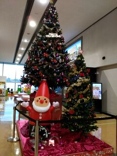 2020年のクリスマスイブに大分空港へお出迎えに行ってきました!!(*'‐'*)♪