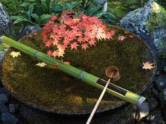 秋の京都で紅葉三昧 (4) 映り紅葉とお地蔵さんに癒されて