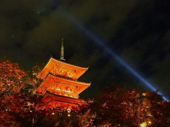 数年前、紅葉シーズンの京都を旅しましたが嵐山のあまりの混雑に閉口。それ以来、秋の京都からは遠ざかっていましたが、海外ゲストがいない今。コロナ対策で予約制にしている寺社もあり、少しはゆっくり散策できるかも・・・とGoToトラベルを利用して久々に京都の紅葉を楽しんできました。<br /><br />2日目午後からは嵯峨野散策と清水寺のライトアップ鑑賞。初めて行った宝筐院の庭園が素晴らしく感激。一方で清水寺のライトアップは大混雑でおしくらまんじゅう状態(^^;)見に行った身で言うのもなんですが、これって大丈夫なのか・・・?<br /><br /><br />1日目<br /> 東福寺、高台寺、石塀小路<br /><br />2日目<br /> 天龍寺、宝厳院、祐斎亭、嵐山<br /> 常寂光寺、二尊院、祇王寺、宝筐院<br /> 清水寺、三年坂、二年坂、法観寺<br /><br />3日目<br /> 蓮華寺、瑠璃光院、詩仙堂、圓光寺<br />