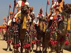 6回目の歳男、懲りなくインド一人旅で砂漠祭りと仏陀の足跡を辿る旅 Part3