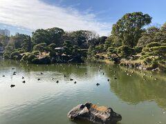 清澄白河から門前仲町を散歩~江戸時代を感じる散歩、深川めし、ベーカリー、カフェなど