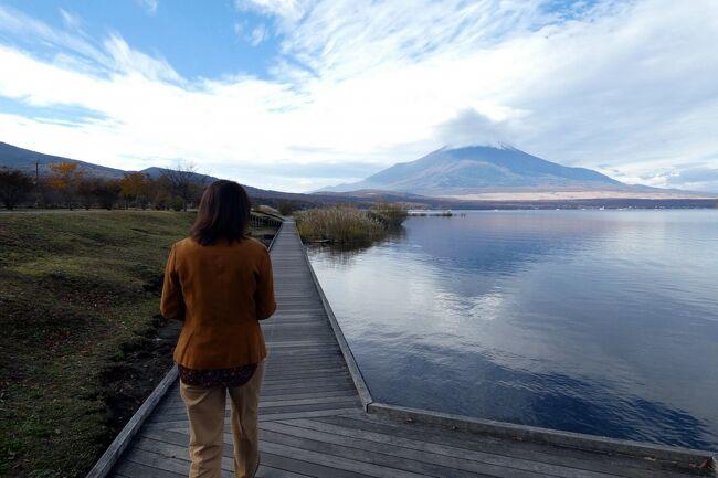 満足な朝食を楽しみお部屋に戻ると、徐々に天気が良くなってきます。<br /><br />そこで、朝の散歩を楽しもうと、車で山中湖畔に向かいます。<br />