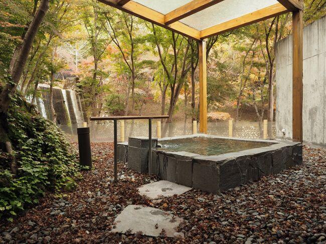 10年以上前から一度は伺いたいと思い続けた憧れの宿が船山温泉。山や観光地を巡る旅が優先され中々機会がありませんでしたが、GOTOが利用できる間にと宿泊しました。温泉宿としては珍しく13時チェックインなので、観光一切なしのゆっくり温泉に浸かり、美味しい食事を頂くだけの旅です。その1では到着から、お部屋、館内、お風呂などをご紹介します。<br /><br />JRを使うと早いですが乗り換えも数回あり少々面倒。という事で今回も高速バスを使って移動です。新宿から京王高速バス身延行きに乗車。身延駅前のゆたかやさんで昼食を取り、JRで内船駅。前日に送迎をお願いしており、13時にチェックイン。宿に周りの紅葉も美しく、ゆっくりと温泉で疲れを癒しました。