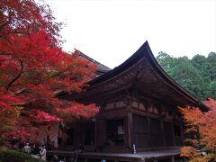 2019年11月 滋賀県・湖東三山 その7 金剛輪寺の血染めのもみじを見ました