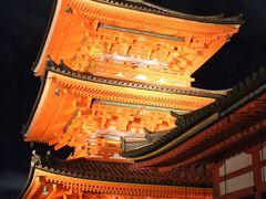 紅葉の京都を凝縮して観光①