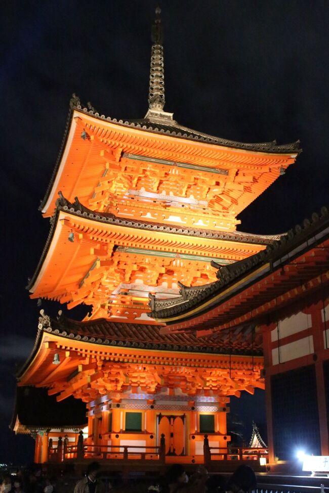 「海外観光客の居ない秋の京都」はレアなので新幹線と宿のパックを申し込み。初日は嵐山→清水寺ライトアップを見て回った