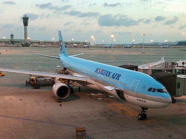 ソウル4日目。帰国日です。大韓航空ビジネスクラス搭乗記パート2になります。<br />後半は私のヲタ活になるので、興味のない方は途中までご覧ください。<br />今年ももう終わります。早く、好きな場所に行き来できる世界に戻ってほしいですね。<br /><br />K-POPグループ「SEVENTEEN(セブンティーン)」メンバーの<br />ユン・ジョンハンさんの誕生日は1995年10月4日です。<br /><br />2020年10月にも韓国・ソウルに行ってジョンハンのセンルイ広告&カフェの<br />カップホルダー巡りをする予定でしたが、コロナの影響で念願叶わず・・・。<br />東京・新大久保で行われているイベントに行ってきました。<br /><br />◇ 東京・新宿「YUNIKA VISION(ユニカビジョン)」<br />セブチのジョンハンのセンルイ映像。<br /><br />ちなみに2020年12月28日~2021年1月5日まではBTSが流れています。<br /><br />2020年12月30日、BTS「V」誕生日記念広告 放映!<br /><br />BTSメンバー Vの誕生日を祝い6種類の特別映像を一挙放映。<br /><br />全米アルバムチャート「ビルボード200」で5作連続1位を獲得。<br />2021年1月に開催予定の「第63回グラミー賞」へのノミネートを<br />果たし、米TIME誌の「エンターテイナー・オブ・ザ・イヤー」に<br />選出されるなど、世界を席巻するK-POPグループ・BTS。<br />その中でも屈指の人気メンバー&quot;V&quot;の誕生日である12月30日、<br />ユニカビジョンでは6種類の応援広告(ファン出資による広告映像)を放映。<br /><br />◆ 2019年夏、フラワーカフェ【KISS BERRY(キスベリー)】 がオープン!<br /><br />◆ 2019年11月、マカロン専門店カフェ【MACAPRESSO(マカプレッソ)】<br />本店がオープン! <br /><br />韓国風ボリュームマカロン「トゥンカロン」のお店です。<br /><br />◆ 2017年7月、【DOMO CAFE(ドウモカフェ)】がオープン!<br /><br />◆ 2018年12月、雑貨店【ORIGOO(おりぐー)】がオープン!<br /><br />◆ チーズタッカンジョン【33トッポキチーズハットグ】新大久保本店<br /><br />毎年恒例のソウル旅!今年も去年と同じ時期(11月)に行ってきました。<br />往復ビジネスクラスを利用。<br />しかし、今回は訳ありの為、ひとりです(泣)<br /><br />現在、私はスターアライアンス加盟航空会社のANAの上級会員<br />(ANAスーパーフライヤーズカード(SFC) 会員)且つワンワールド加盟<br />航空会社のJALの上級会員(JALグローバルクラブ(JGC) 会員)なのですが、<br />スカイチーム加盟航空会社のデルタ航空と大韓航空は上級会員ではなく、<br />各々の航空会社のマイレージプログラムで貯めたマイルは、特典航空券を<br />発券することもなく、貯めたマイルを殆ど活用しきれていませんでした。<br /><br />大韓航空のマイレージプログラム「スカイパス」で貯めたマイルは、<br />大韓航空のエコノミークラスで韓国・ソウルに旅行をした際に、<br />金浦国際空港又は仁川国際空港で大韓航空の航空会社ラウンジ<br />『KALラウンジ』を利用(1人4,000マイル)する際に使用するくらいで、<br />デルタ航空のマイレージプログラム「スカイマイル」で貯めたマイルに<br />関しては、これまで単に所有しているだけという状態でした。<br /><br />しかし、デルタ航空のマイレージプログラム「スカイマイル」には、<br />1) マイルの有効期限がない<br />2) 特典航空券を発券する場合に燃油サーチャージは不要<br />という大きなメリットがあります。<br /><br />デルタ航空で貯めたマイルを使用して特典航空券を発券する場合、<br />必要マイル数が多いことから、これまでデルタ航空で貯めていたマイルは<br />そのまま放置状態だった訳ですが、ウェブサイトでよく確認してみると<br />非常に少ないマイルで特典航空券を発券することができる路線があることに<br />気付きました。<br />それは「日本⇔韓国」の路線で、デルタ航空の特典航空券を発券するのに<br />超おすすめ路線です (^^♪<br /><br /><「日本⇔韓国」の特典航