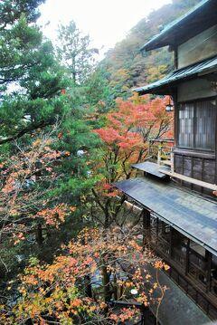 県内旅行で箱根強羅から箱根塔ノ沢へ。③塔ノ沢の憧れの宿である老舗旅館の環翠楼へ。その3