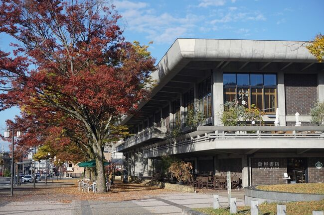 インバウンド客が落ち着いている今、そうだ、京都に行っとかないと…。<br />コロナ対策をしっかりとして、早朝の京都に行ってきました。<br />画像は、岡崎公園にてです。<br /><br />過去の京都・京都市左京区散歩記。<br /><br />関西散歩記~2019-5 京都・京都市左京区編~<br />https://4travel.jp/travelogue/11613738<br /><br />関西散歩記~2019-4 京都・京都市左京区編~<br />https://4travel.jp/travelogue/11608157<br /><br />関西散歩記~2019-3 京都・京都市左京区編~<br />https://4travel.jp/travelogue/11500668<br /><br />京都まとめ旅行記。<br /><br />My Favorite 京都 VOL.6<br />https://4travel.jp/travelogue/11504781<br /><br />My Favorite 京都 VOL.5<br />https://4travel.jp/travelogue/11463030<br /><br />My Favorite 京都 VOL.4<br />https://4travel.jp/travelogue/11369230<br /><br />My Favorite 京都 VOL.3<br />https://4travel.jp/travelogue/11275410<br /><br />My Favorite 京都 VOL.2<br />http://4travel.jp/travelogue/11120777<br /><br />My Favorite 京都 VOL.1<br />http://4travel.jp/travelogue/10945390