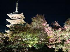 2020の紅葉は京都の東寺へ行きました