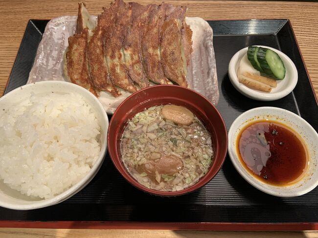 大阪へ帰省する前に、京都にあるお墓参りもかねて、1泊しました。<br />10代の頃は、親せきの家に泊っていたのですが、成人してからは泊ったことがなく、30年ぶりくらいに京都に泊りました。<br /><br />行き:東京-京都:新幹線のぞみ <br />帰り:大阪-東京:ジェットスター<br /><br />京都でやりたかったこと<br />・お墓参り<br />・人気餃子店亮昌に行く<br />・東寺<br />・お節のお惣菜を買う<br />