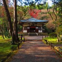 ぼっち一人旅 冬の京都 ①