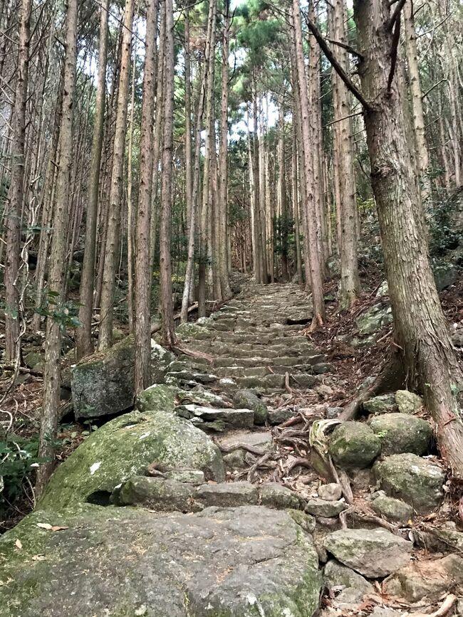 三重県南端・和歌山県の大自然シリーズ。特に心動かされたスポットのみ投稿。<br /><br />松本峠。いにしえの人々が熊野速玉神社に思いを馳せながら通った熊野古道。所要時間は1.5時間ほど。<br /><br />歩道は整備されているものの、あまり人が来ないのか、野趣あふれている。驚いたのは、他の観光客に誰1人会わなかったこと、いくら冬でコロナ禍とはいえ。。そのおかげで、大自然や神聖な雰囲気を存分に堪能できた反面、薄暗い山道は若干恐ろしくもあった。<br /><br />鹿らしき動物の鳴き声や走る音がときたま聞こえた。狩猟禁止の看板を見かけた。召膳無苦庵の大将いわく、動物保護ではなく観光客に流れ弾が当たったら大変なので、この辺り狩猟禁止としているそう。<br /><br />大自然に触れるのって気持ちが良く、絶好のリフレッシュ。まったく興味なかった山登りにも興味が出てきたし、1年に1回はこうして自然に触れてパワーをもらいたいと感じた。<br /><br />表紙写真は松本峠の入口付近。<br />