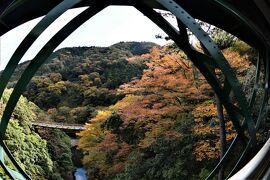 箱根登山鉄道に乗って、令和『阿房列車』の旅 2