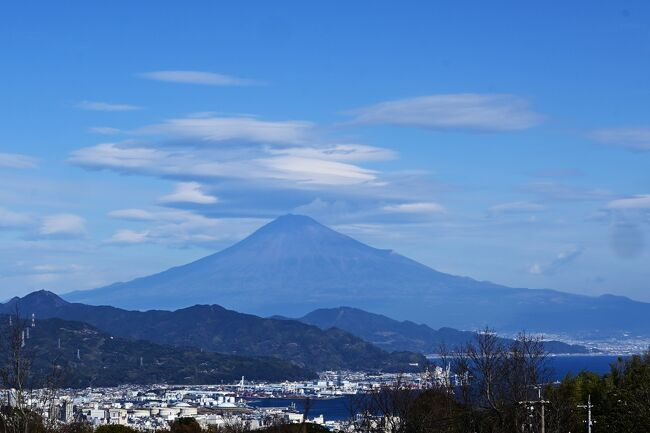 静岡の日本平動物園に行くことを決め、さてホテルはどうするかとマップを見て日本平ホテルが目に付きました。今の情勢を反映して朝食付き宿泊料金がお手頃価格になっています、静岡駅、東静岡駅への送迎シャトルバスもあります。それに日本平夢テラスという眺望抜群の場所もあります。これで決めない手はありません。日本平ホテルは何処から何処までが敷地なのかよく分からないほど広大です。なだらかな斜面を旨く利用し、景観を損なわないよう建物は低層でロビーやレストラン、上位ランクの部屋から富士山が綺麗に見えます。そして日本平夢テラスここがまた素晴らしい、木材をふんだんに使い自然に溶け込むよう設計された建物、そこからの夢のような眺望。来て良かったゾ!!