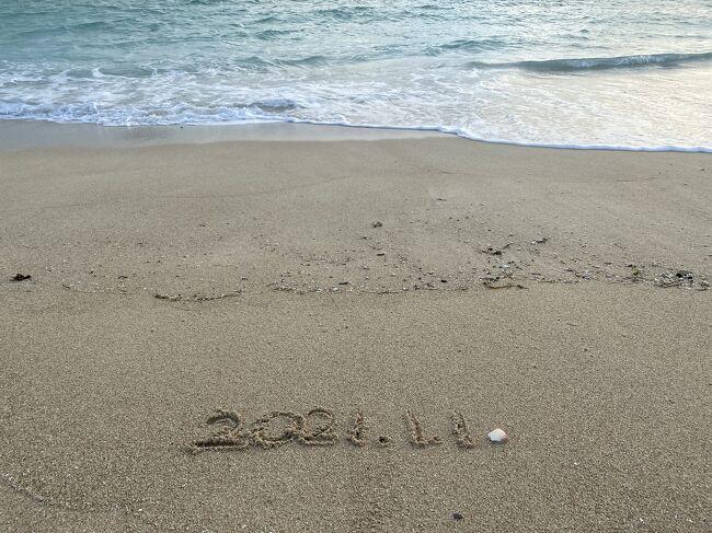 沖縄旅行②<br /><br />年末年始は働くものだったのですが…今年から仕事の種類が変わり、すっかり連休となりました。こんなご時世だから迷いましたが、 気をつけながら静かに旅行に行こうと決め、思い切って予約。暖かい年末年始を過ごせるのか…<br /><br />12/31 <br />NH463 羽田空港 07:25発&gt; 那覇空港 10:20着<br />フジレンタカーで移動<br />ホテル: 名護 海人の宿<br /><br />1/1 <br />フジレンタカーで移動<br />ホテル: 那覇 パシフィックホテル沖縄<br /><br />1/2<br />フジレンタカーで移動<br />NH476 那覇空港 19:15発&gt; 羽田空港 21:30着