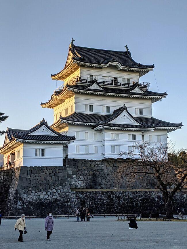 今年は箱根駅伝の観戦も感染、防止のため自粛が要請されて居ります。(正月から、つまらない駄洒落…完全にジジイです…)<br />そんな訳で前日に箱根、小田原をお散歩しました。<br />20年前の忌まわしき記憶に打ち勝って、小田原城のイメージ改善(本当に個人的な理由です)になって、良い元旦を過ごす事が出来ました!<br />今年こそ、今年こそは、良い年にしたいですね!
