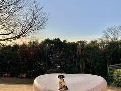 詩との旅15泊目☆THE SCENE hamanakoへ