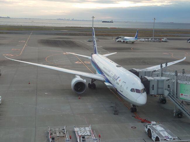 去年の話となりますが、新型コロナウイルス感染症の影響を受けた東京を盛り上げるため、東京の魅力を国内に広くPRする都民限定のキャンペーン。<br /><br />飛行機を見るのも乗るのも好きな私はこのキャンペーンに応募し、羽田エクセルホテル東急に宿泊してきました。<br /><br />今まで4トラの皆さんの記事を読むだけの『読み専』でしたが、今回、意を決して記事を上げたいと思いますが、何せ文才がないのでほとんど画像のみのアップロードになることをお許しください。<br /><br />それではスターティン!!