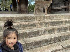 2020-2021 今年の年越しは初奈良県 JWマリオットホテル(クラブアクセス)3世代旅行