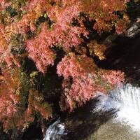GoToトラベルで奥湯河原へ ☆ (2)密を避けて湯河原から掛川へ