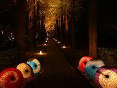 大田黒公園の紅葉を見に行ってみました。