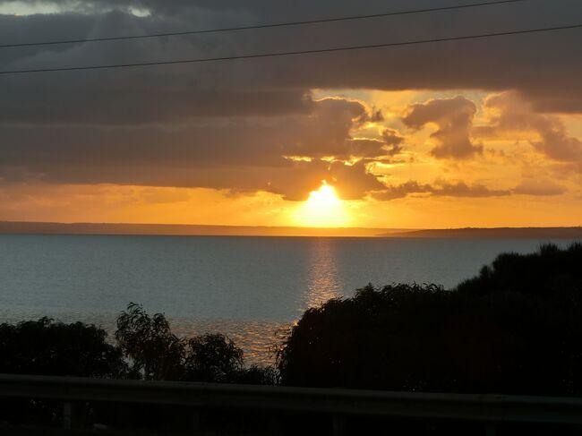 地元応援企画(3)カンガルー島復興祈念旅 キングスコートという街
