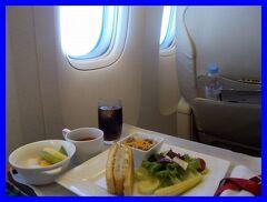 夏バカンス沖縄2014(10終)ラグナガーデンホテルの朝そしてJALファーストクラスで那覇から羽田へ