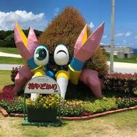 沖縄⑥『アラマハイナコンドホテル』の無料バスで『沖縄美ら海水族館』へ♪イルカショーはオキちゃん劇場で開催!カフェ【オーシャンブルー】の指定席
