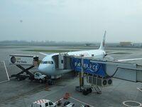 南米チリのサンチアゴ空港
