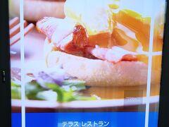 ヒルトン ステマ ダイヤモンド修行 第1弾「ヒルトン成田 その2 成田空港」