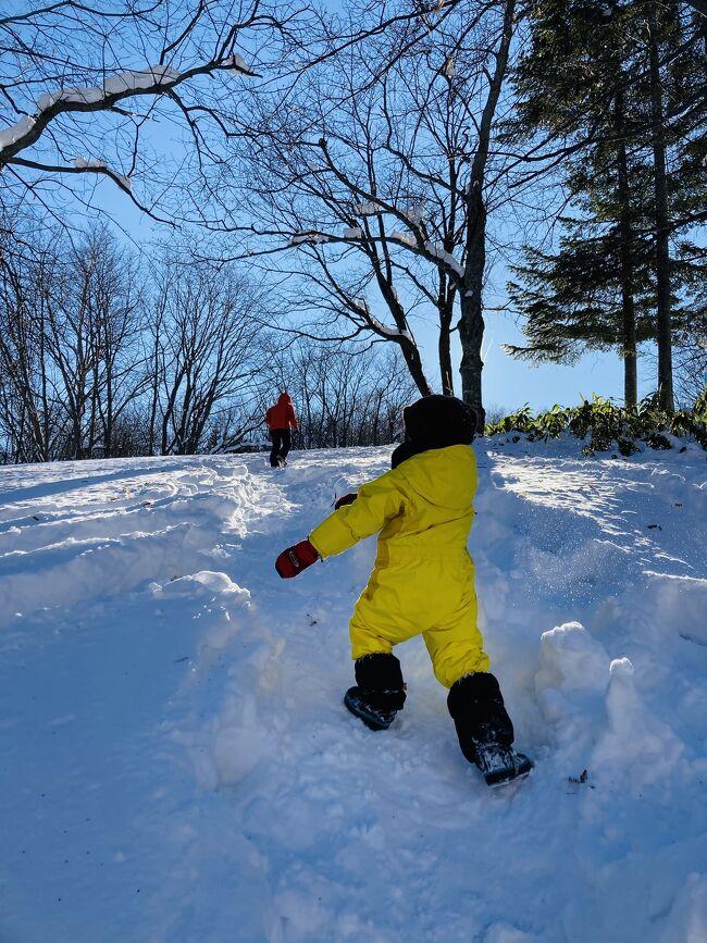札幌芸術の森にある、佐藤忠良記念子どものアトリエで、「ちびっこ油絵」という体験教室に参加してきました。<br />アトリエは野外美術館の中にあるのですが、冬季は入場が無料。かんじきを使って雪の中を歩き回る「かんじきウォーク」と「ねんどくんのかんじき大冒険」という謎解きラリーをやってきましたよ。<br /><br />じゃあ、<br /><br />ゴー!