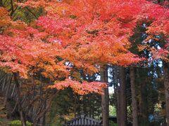 2020年 秋の長野で紅葉三昧【3】ご利益がいっぱい☆神社とお寺に囲まれた別所温泉散策