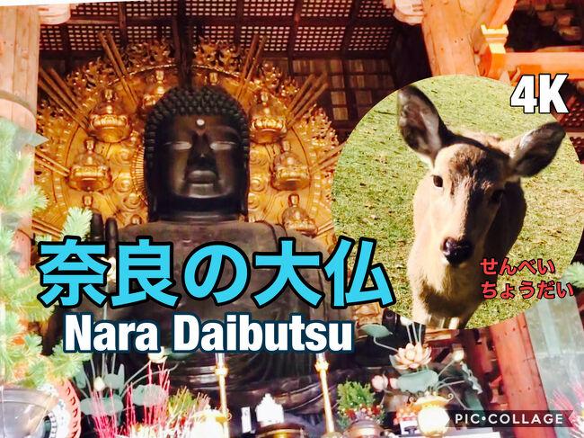https://youtu.be/yYwJGn0jiqg 大仏殿~奈良公園の鹿<br /><br />YouTubeに4K撮影でUPしています<br /><br />11/21~24 コロナ禍<br /><br />大阪~奈良へ。奈良は高校の修学旅行以来。もう一度大仏が見たくて、東大寺 大仏殿へ。<br /><br />朝一8時開門の大仏殿。シカも朝日を浴びてお出迎えへ。大人になってじっくりと一人で散策。<br /><br />お腹のすかせた鹿に煎餅をあげたら、、大変な事に<br /><br />帰りは伊賀敢国神社、名古屋伊奴神社、羊神社、上野天満宮、富士浅間大社で御朱印集め