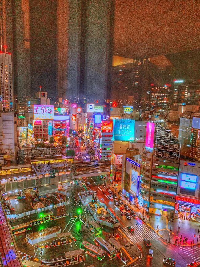 箱根から東京へ。<br />仕事しながら東京を楽しみます