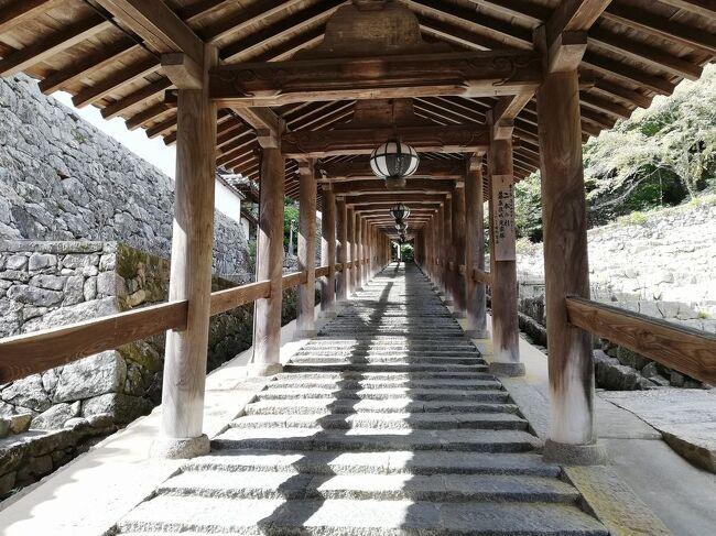 """弾丸海外の旅とか、マニアックな国内の旅を好む私ですが、<br />たまには「ベタ」(関西芸人がいうところの定番中の定番の意)<br />な観光地を訪れることがあります。<br />今回は、奈良県の「飛鳥&長谷寺&室生字&三輪そうめん&柿の葉寿司&葛餅」をご紹介します。<br /><br />★「ベタ」な観光地シリーズ<br /><br />ニセコ(北海道)<br />http://4travel.jp/travelogue/10557930<br />美瑛&青い池(北海道)<br />https://4travel.jp/travelogue/10417987<br />幸福駅&ばんえい競馬(北海道)<br />http://4travel.jp/travelogue/10417731<br />高山稲荷神社&鶴の舞橋(青森)<br />https://4travel.jp/travelogue/11404300<br />下北半島(青森)<br />http://4travel.jp/traveler/satorumo/album/10437472/<br />岩木山&こみせ(青森)<br />http://4travel.jp/travelogue/10557256<br />田んぼアート(青森)<br />http://4travel.jp/travelogue/10993533<br />弘前&十二湖(青森)<br />http://4travel.jp/traveler/satorumo/album/10490992/<br />平泉&伊豆沼・内沼の白鳥&松島(岩手&宮城)<br />https://4travel.jp/travelogue/11499615<br />多賀城(宮城)<br />http://4travel.jp/traveler/satorumo/album/10688179/<br />仙台光のページェント(宮城)<br />http://4travel.jp/travelogue/11207650<br />宮城蔵王キツネ村(宮城)<br />https://4travel.jp/travelogue/11345894<br />妙乃湯温泉&十和田プリンスホテルに泊まる角館&田沢湖&乳頭温泉<br />&十和田湖(秋田)<br />https://4travel.jp/travelogue/11600220<br />秋田竿灯まつり(秋田)<br />http://4travel.jp/travelogue/10941648<br />上山温泉""""古窯""""&蔵王お釜(山形)<br />https://4travel.jp/travelogue/11618311<br />山寺(山形)<br />http://4travel.jp/traveler/satorumo/album/10785796<br />蔵王&天元台(山形)<br />http://4travel.jp/travelogue/10571930<br />蔵王樹氷(山形)<br />http://4travel.jp/traveler/satorumo/album/10450750/<br />天童の人間将棋(山形)<br />http://4travel.jp/traveler/satorumo/album/10768677<br />海鮮食べ放題バスツアー (山形)<br />http://4travel.jp/travelogue/11048424<br />月山&山形花笠まつり&仙台七夕(山形・宮城)<br />http://4travel.jp/traveler/satorumo/album/10557069/<br />""""るーぷる仙台""""で市内観光&牛タン&仙台大観音(宮城)<br />https://4travel.jp/travelogue/11642389<br />カシマサッカースタジアム&真壁(茨城)<br />http://4travel.jp/travelogue/10556710<br />日光東照宮(栃木)<br />http://4travel.jp/traveler/satorumo/album/10428289/<br />奥日光(栃木)<br />http://4travel.jp/traveler/satorumo/album/10420786/<br />浅間山・伊香保・赤城(群馬)<br />http://4travel.jp/traveler/satorumo/album/10422735/<br />休園中の東京ディズニーリゾート(千葉)<br />https://4travel.jp/"""