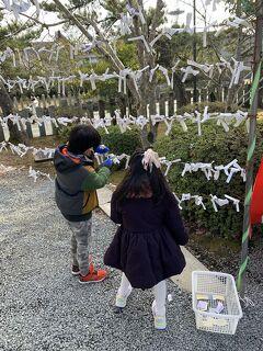 熊本 7歳,5歳子連れ 日帰りドライブ 阿蘇神社+阿蘇ファームランド