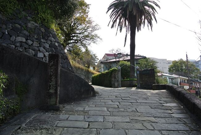 日本でもコロナウイルスの影響が出始めていた3月初旬に九州へ行って来ました。<br />私の住む北海道では全国に先駆けて小中学校の一斉休校などが行われ、日常生活も自粛ムードが高まっている中での旅行はやはり躊躇する思いが強く、ギリギリまで迷いに迷いましたが、今回はほぼドライブ旅行であること、旅行業界や観光業界は大打撃を受けていること、わが家は高齢者や子どももなく夫婦2人だけなのでリスクが少ないこと、十分備えをして旅先でも十分に気を付けることとし、予定通り決行することに。<br />以前から予約していたものを再確認し、コロナの影響で安くなってるホテルなどはちゃっかり取り直しをして出発しました。<br /><br />行き先は福岡・大分・長崎・熊本で、目的はグルメと軍艦島観光です。<br />公の施設は休館している場所が多かったのは残念ですが、それでも十分楽しむことができました。<br /><br />コロナ禍での旅行、いつものように旅行記を書く気にはなれず、帰宅してから9か月も経ってからの記録となってしまい、記憶がほぼ飛んでしまっていますが、どなたかの旅の参考になれば幸いです。<br />また、世界がコロナウイルスの脅威から脱し、元の生活や元の旅を楽しめる日が、一日でも早く訪れることを切に願います。
